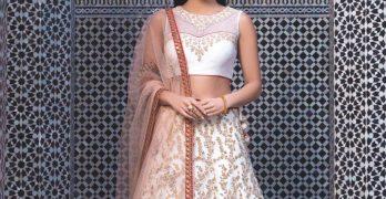 Bride wearing an Indian wedding dress